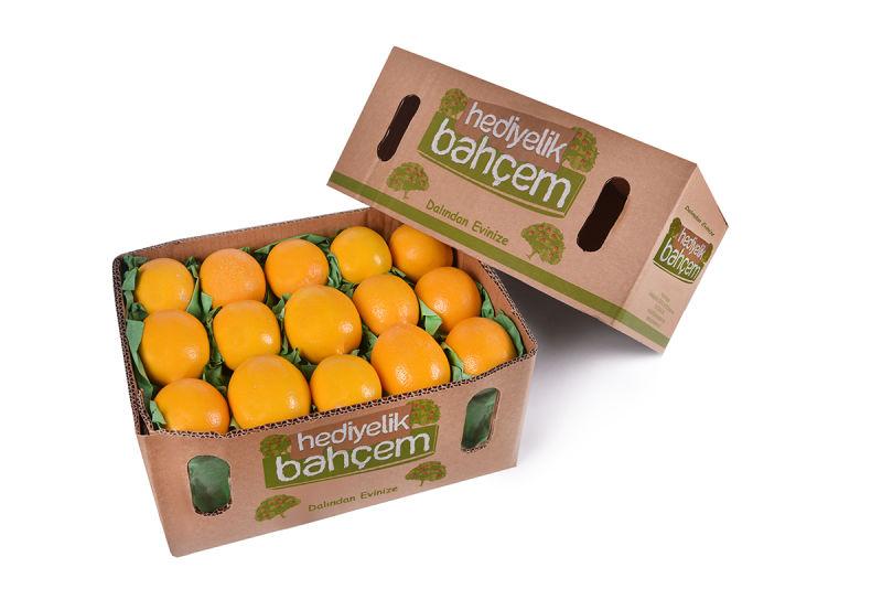 5 Kg Tatlı Limon